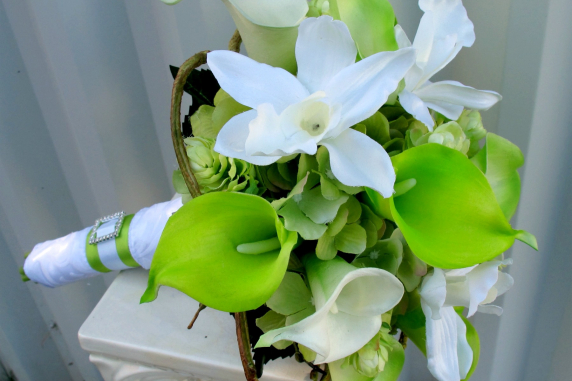 green lily love - photo #9